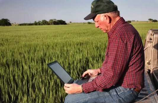 Man in a field on a computer.